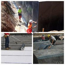 3mm 4mm SBS waterproofing Sheet building construction materials to Algria market from china