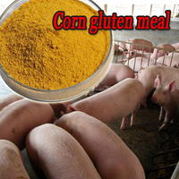 Organic poultry corn meal animal feed