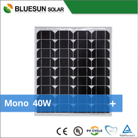 Bluesun TOP quality 12v 10w 20w 30w 35w 40w solar panel photovoltaic solar panel