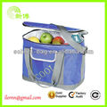 Latest Technology battery powered cooler bags for picnic