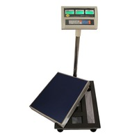 Electronic Digital Weighing Platform Scale