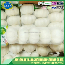 Low price China made garlic with good quality in European market