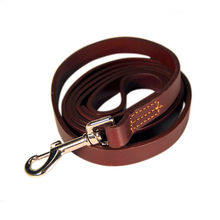 naturally vegetable tanned leather leash for dog
