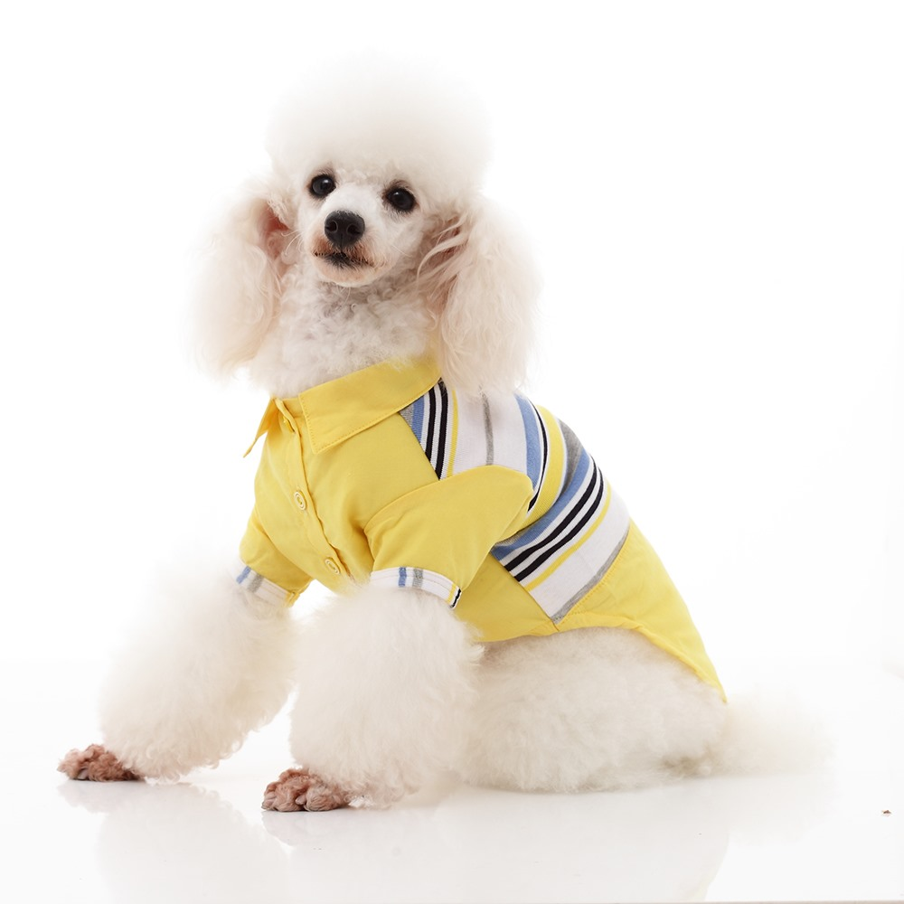 Factory Price Fashionable Coat Cat dog Clothes in Summer Prevent Hair Bulb Rainbow T-shirt