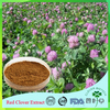 Best quality and professional of Trifolium Pratente L10:1 Trifolium Pratente L
