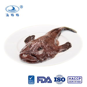 Sea food fish frozen monkfish whole round from china supplier
