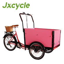 250 cargo bike for kids and loved pet