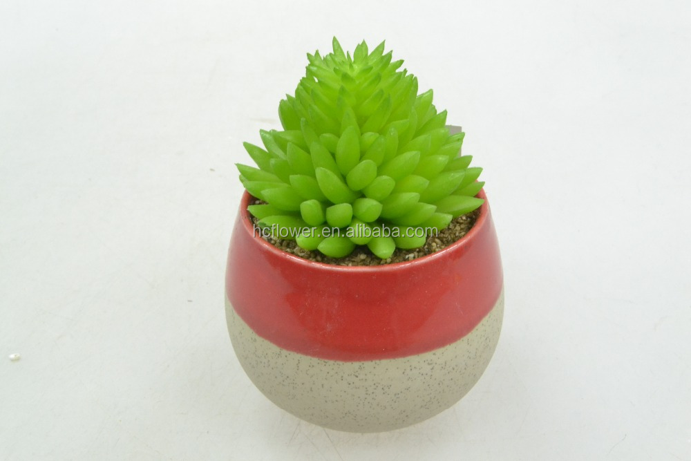 Artificial Succulent Plant In Two Color Modern Ceramic Pot