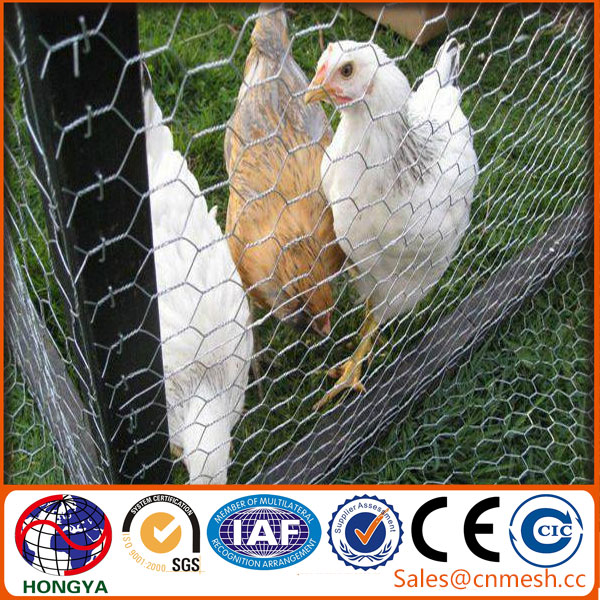 China supplier Alibaba lowest price chicken wire mesh/chicken wire netting/hexagonal wire mesh (factory manufacture)