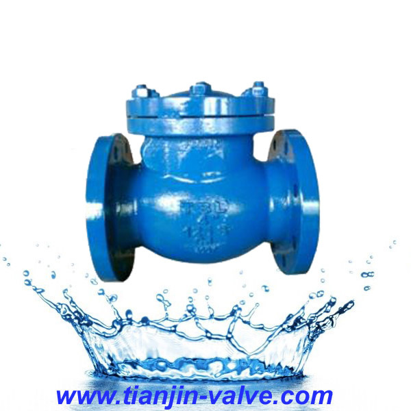 vertical lift swing check valve