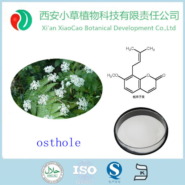 Natural Antipruritic product Osthole 10%-98% CAS 484-12-8