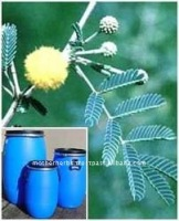 Pure Acacia catechu extract powder