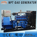 CE approved competitive price 100kw gas generator
