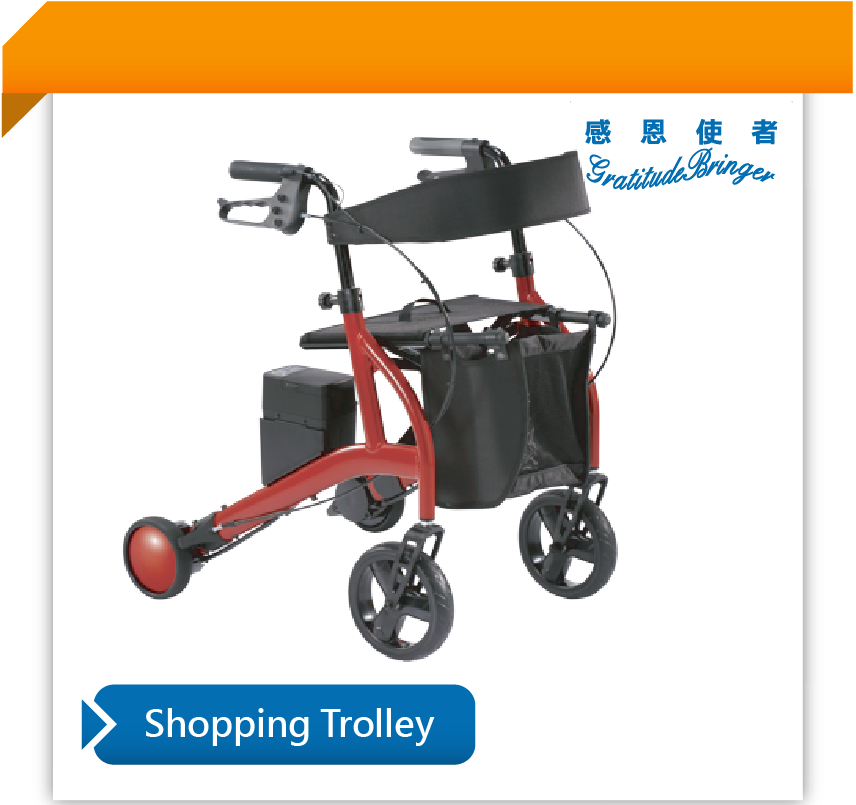 Wheeled Shopping Bag Walker for Elderly