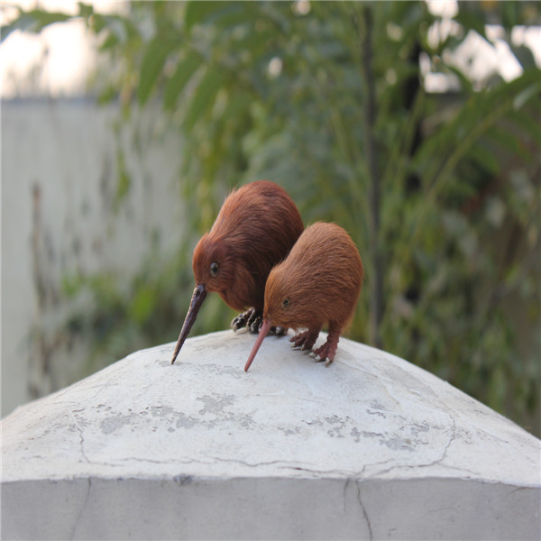New products peluche kiwi birds for sale ornaments