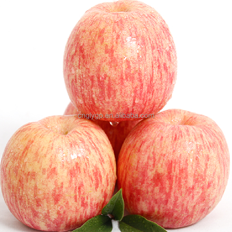 Red Chief Fuji Apple wholesale from china safe to eat