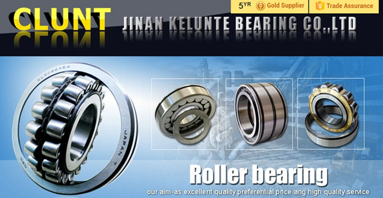 China Factory Supply Single Row and Double Row Taper Roller Bearing