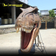 MY DINO A083 Jurassic Dinosaur Park Door and Wall Decoration large Animatronic T-rex Head for Sale