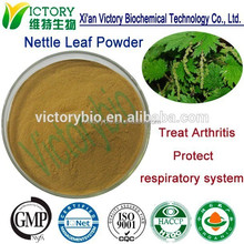 Natural Pure Nettle Leaf P.E.