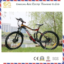 Fashion 36V 250W Hub Motor Powered Electric Push bike