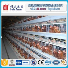 poultry farming equipment and broiler poultry farm house design