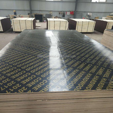 12mm black film faced plywood film faced plywood / ply wood / marine