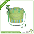 Takegreenbag promotional fitness cooler lunch bag manufacture