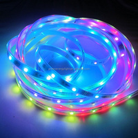 magic dream color led strip fita de led 5050 rgb waterproof ws2811ic led strip waterproof IP65