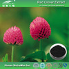 Pure Red Clover Extract,Red Clover P.E,Isoflavones 20%