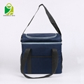 promotional insulated picnic lunch wine cooler bag