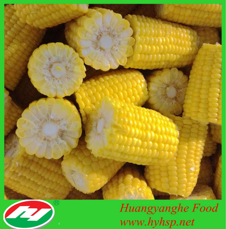 Frozen Sweet Corn Cuts (High Quality)
