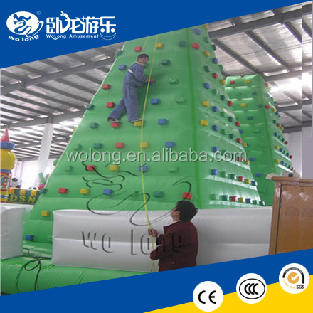 Top Quality inflatable climbing wall with slide