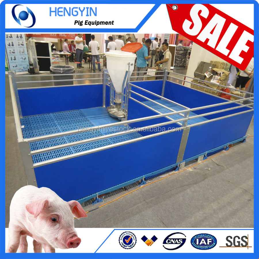 Factory sale Pig Farm equipment Weaning stall for sell