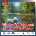 Inkjet Glossy water-resistance Coated polyester Canvas/ Fabric Roll