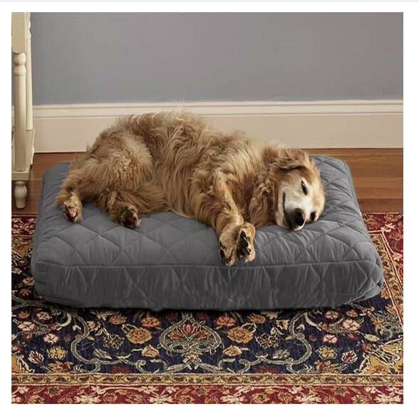 China reliable vendor Lowest Cost dog Pet bed cushion Pet cushion,Animal Cushion