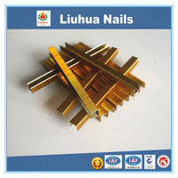 Stainless Steel Nail ,Plastic Head Stainless Steel Nail