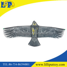 Outdoor sport eagle flying kite with wire