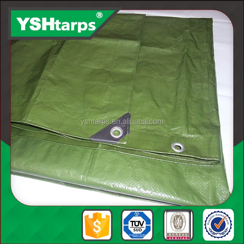 Waterproof Thin Flexible Plastic PE Tarpaulin Sheet