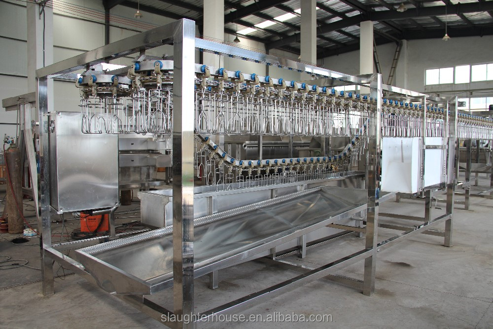 Low investment stainless steel chicken slaughterhouse