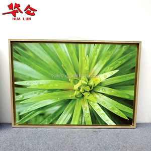 Custom Decorative Printed Picture Painting Canvas Frames Factory