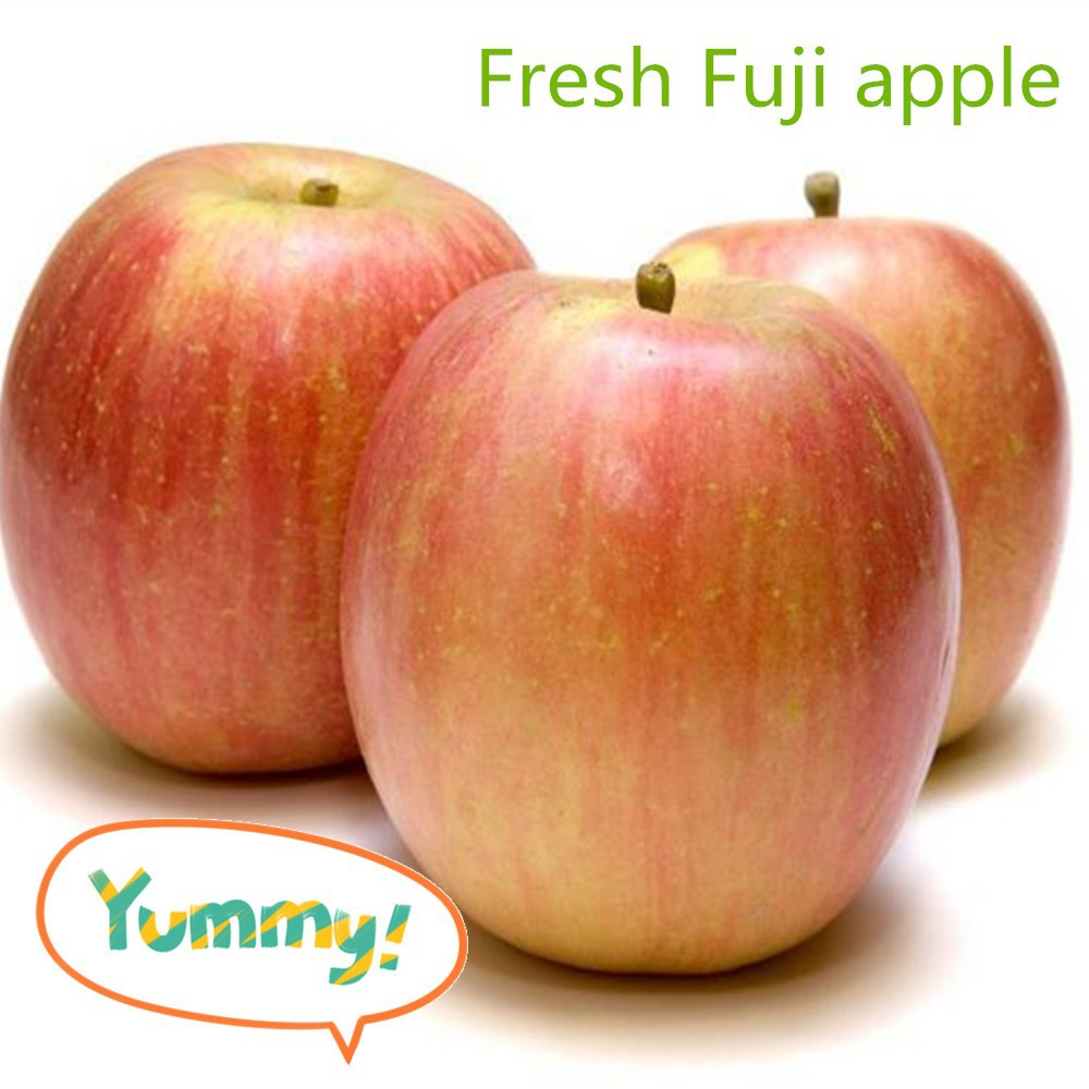 China Fuji apple/sweet apple from farm export