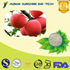 China Supplier Baking Powder Powder Juice Ingredients Apple Juice Powder