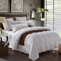 Factory Price High Quality Thin Comforter