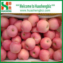 2016 Fuji apple/fresh apple fruit specification/apple prices