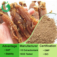 GMP Factory Supply Korean Red Ginseng Powder