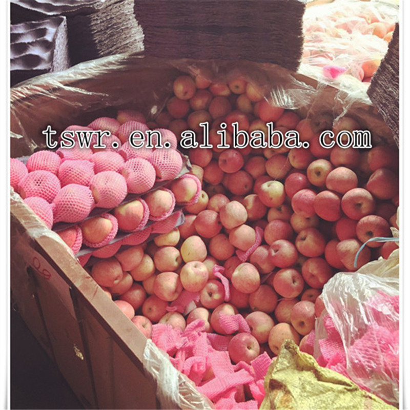 high quality fresh sweety apples wholesale price