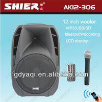 SHIER AK12-306 12 Inch rechargeable bluetooth outdoor 12 inch dual subwoofers