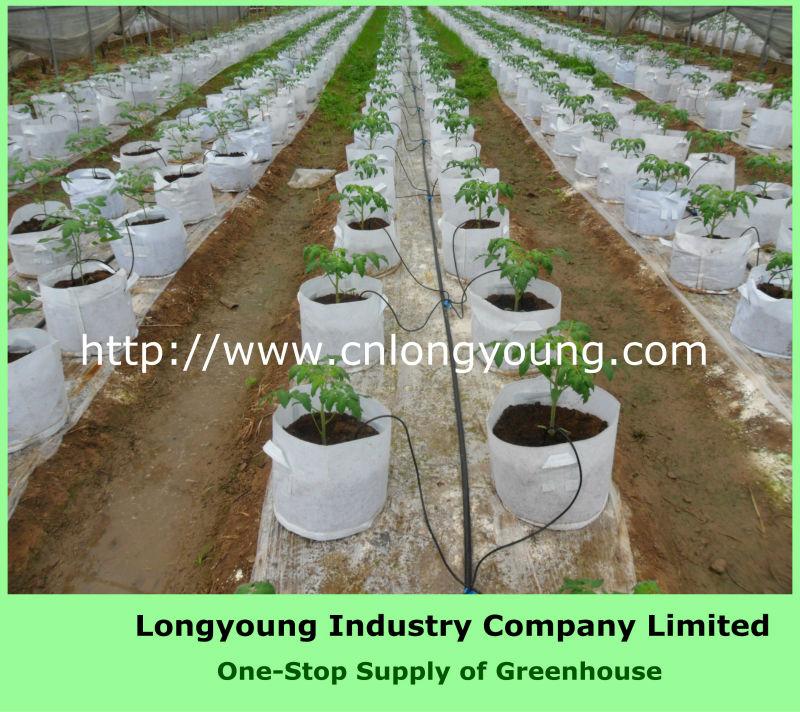 Kit serra sistema di irrigazione serre della singolo for Irrigazione serra