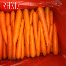 supply Varieties fresh carrot Manufacturer