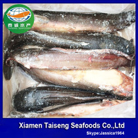 Wholesale Products China Live Catfish